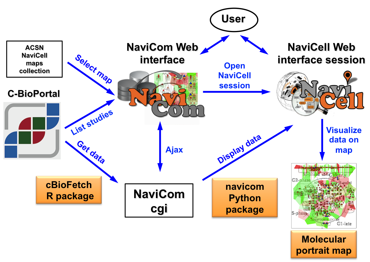 Organisation of the NaviCom service